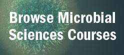 Browse Microbial Sciences Courses Link